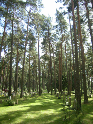 森の墓地R0011677.jpg