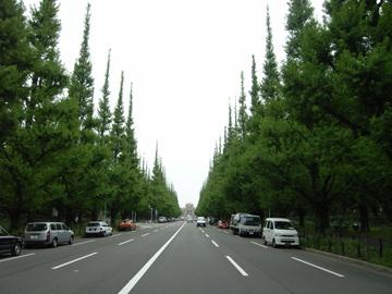 神宮外苑の新緑R0010643.jpg